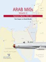 Arab Migs 2