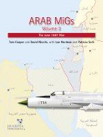 Arab Migs 3