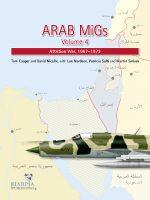 Arab MIGs 4